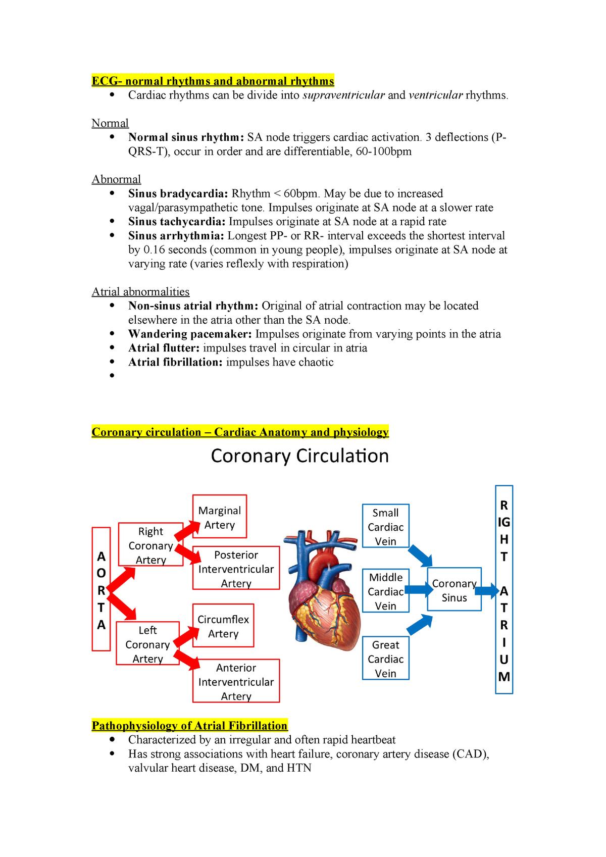 Atrial fibrillation summary notes for Cardiovascular system
