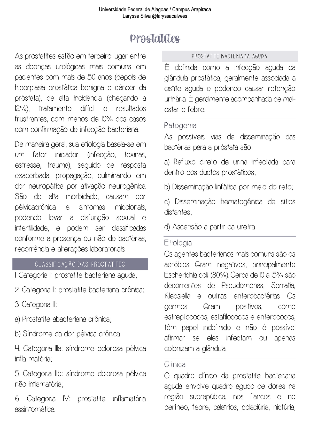 Prosztata – Wikipédia