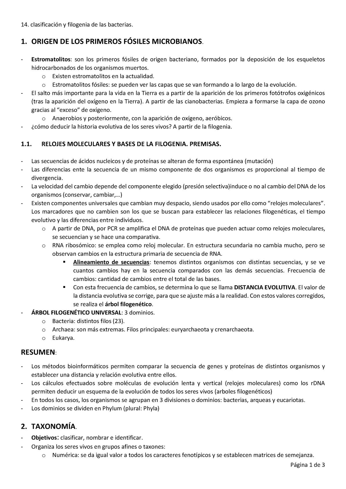 Clasificación Y Filogenia De Bacterias Microbiología 16579