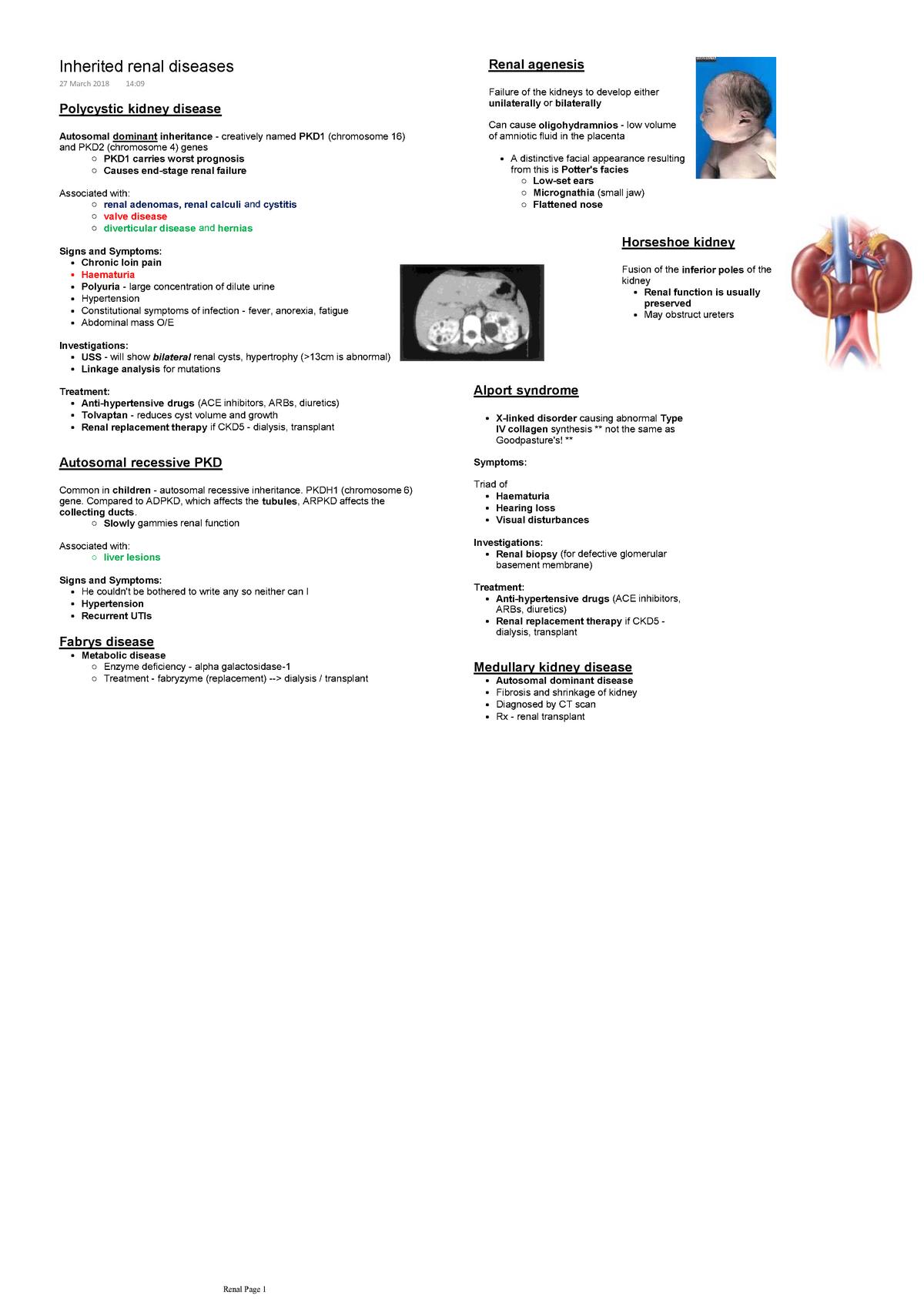agenesia renal faciesa