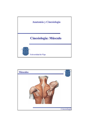Temas 6 - 7 Cinesiologia Muscular - Diapositivas - G050201 ...