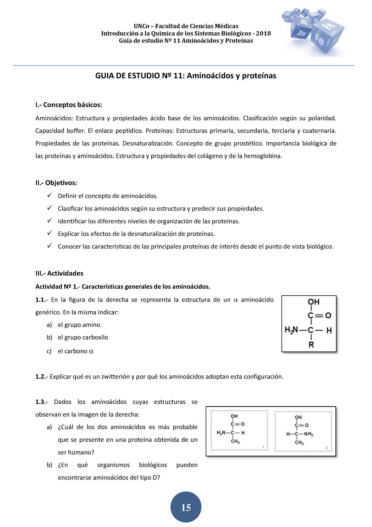 2018 Guia De Estudio Nº 11 Aa Y Proteinas Uncoma Studocu