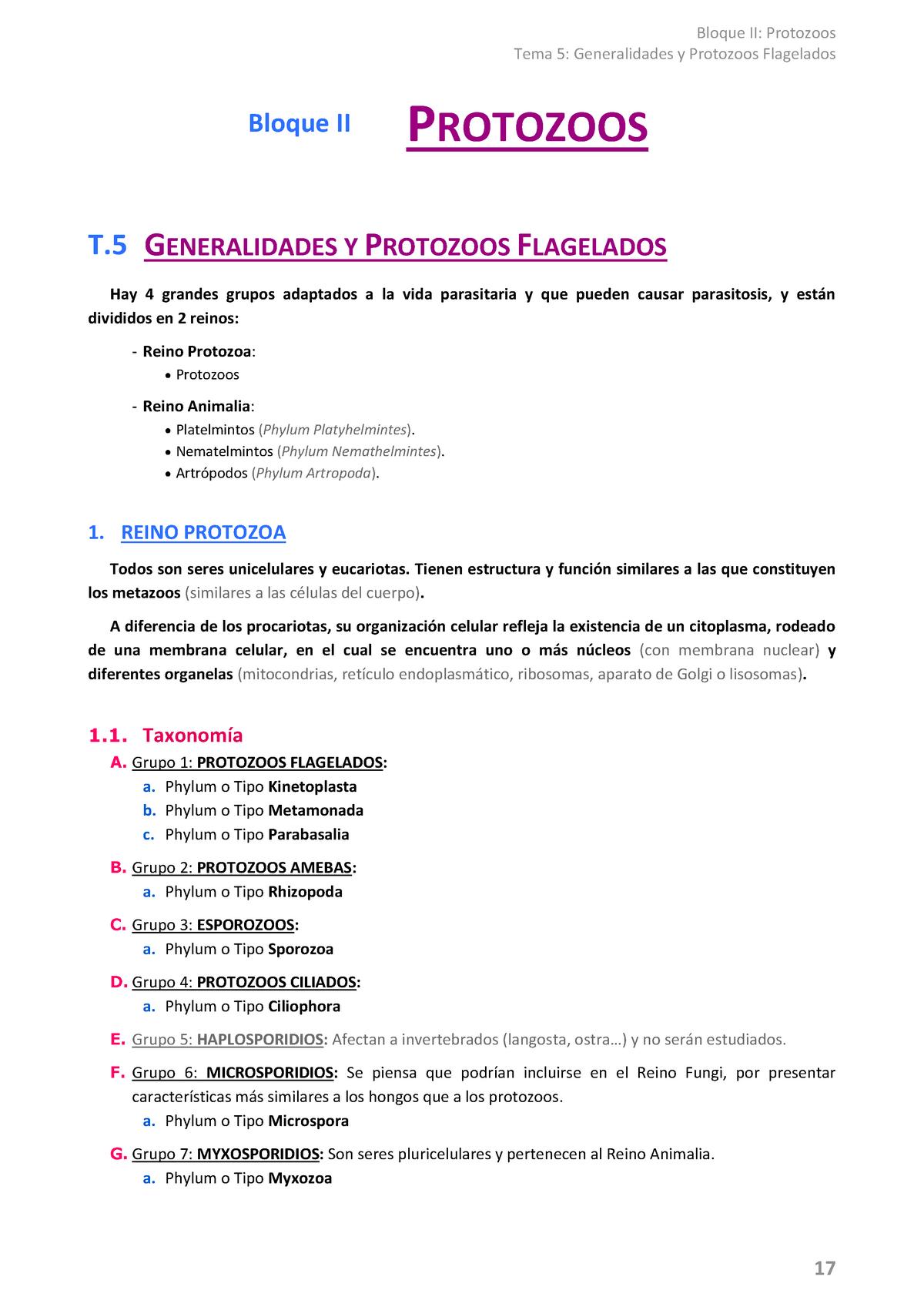 Parasito B2 Protozoos 28417 Unizar Studocu