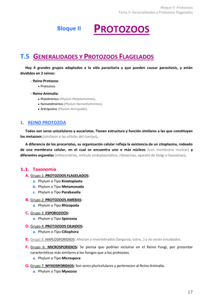 Esporogonia asexual and sexual reproduction
