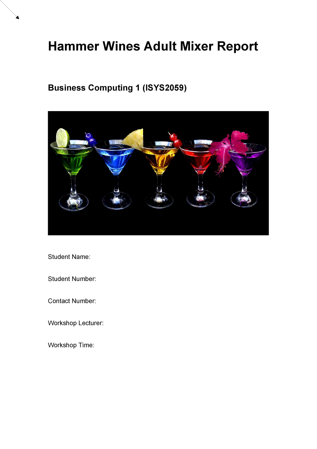 ISYS2059 Business Report Jan 2017 Season - ISYS2056 - RMIT