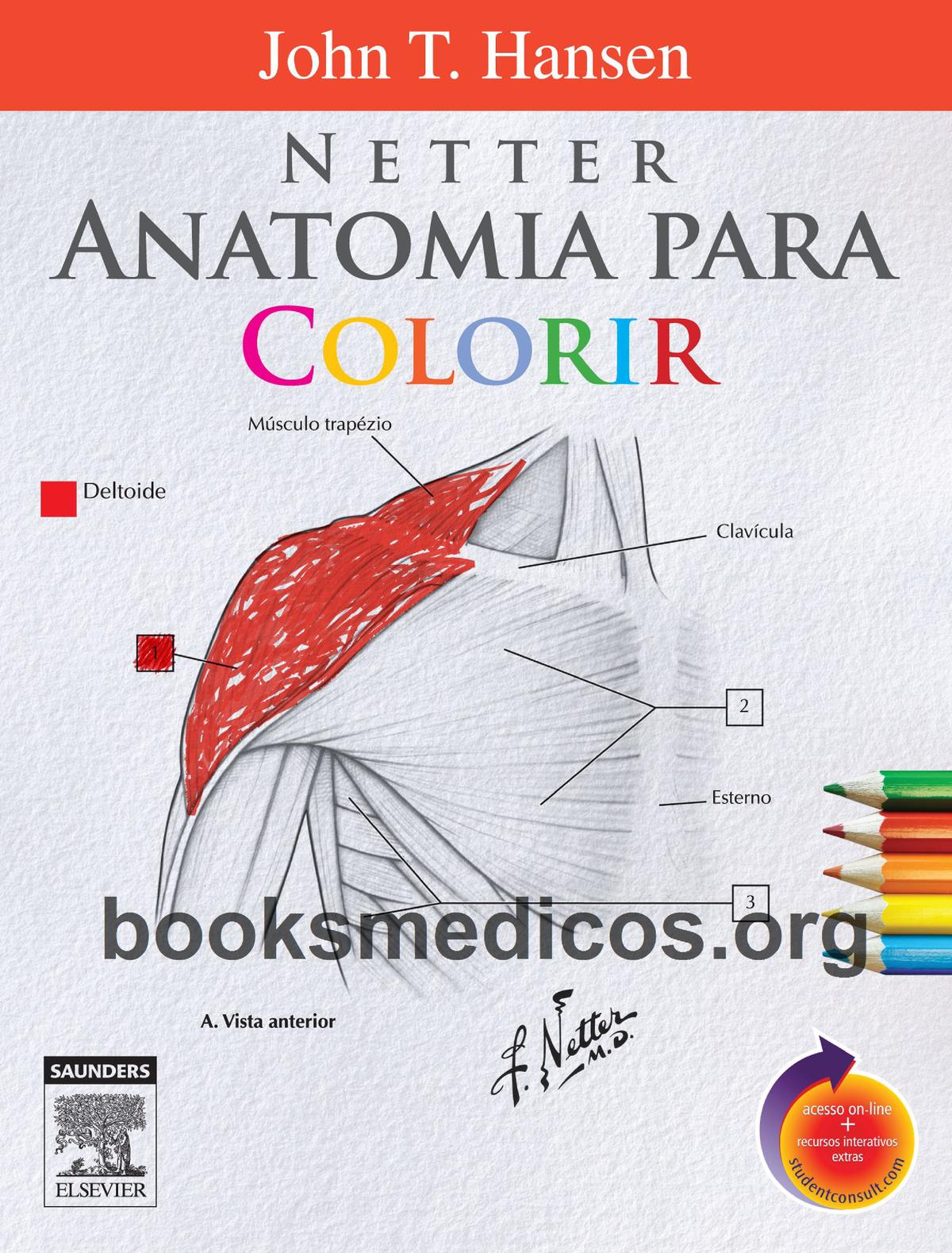 Netter Anatomia para Colorir 1a Edição booksmedicos - 2668 - StuDocu