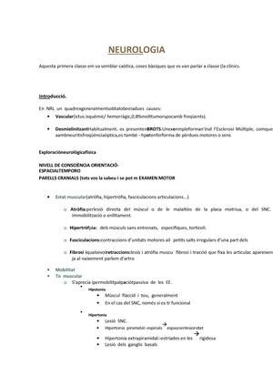 Malalties Del Sistema Nerviós - Apuntes completos. Año 2014/2015 ...