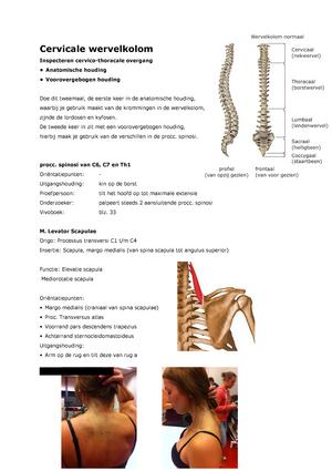 Anatomie periode 6 - H07ANF: Anatomie en fysiologie - StudeerSnel