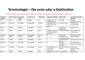 722b13f1c0 A-Deklination - Zusammenfassung Terminologie Mediziner - StuDocu