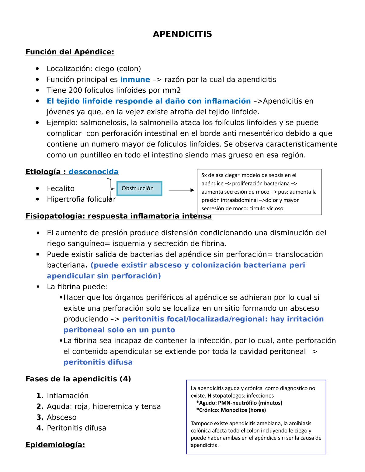 Fases Apendicitis