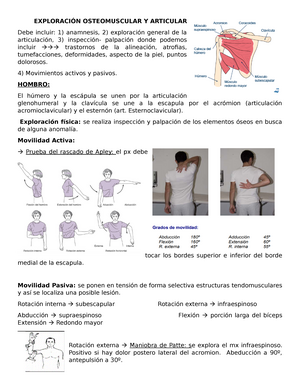 de ce doare articulația inghinală artroza tratament artrita picior