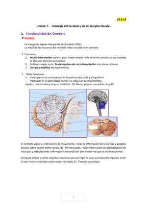 Apuntes - Anatomía y Fisiología del Sistema Nervioso - Unidad 7 ...