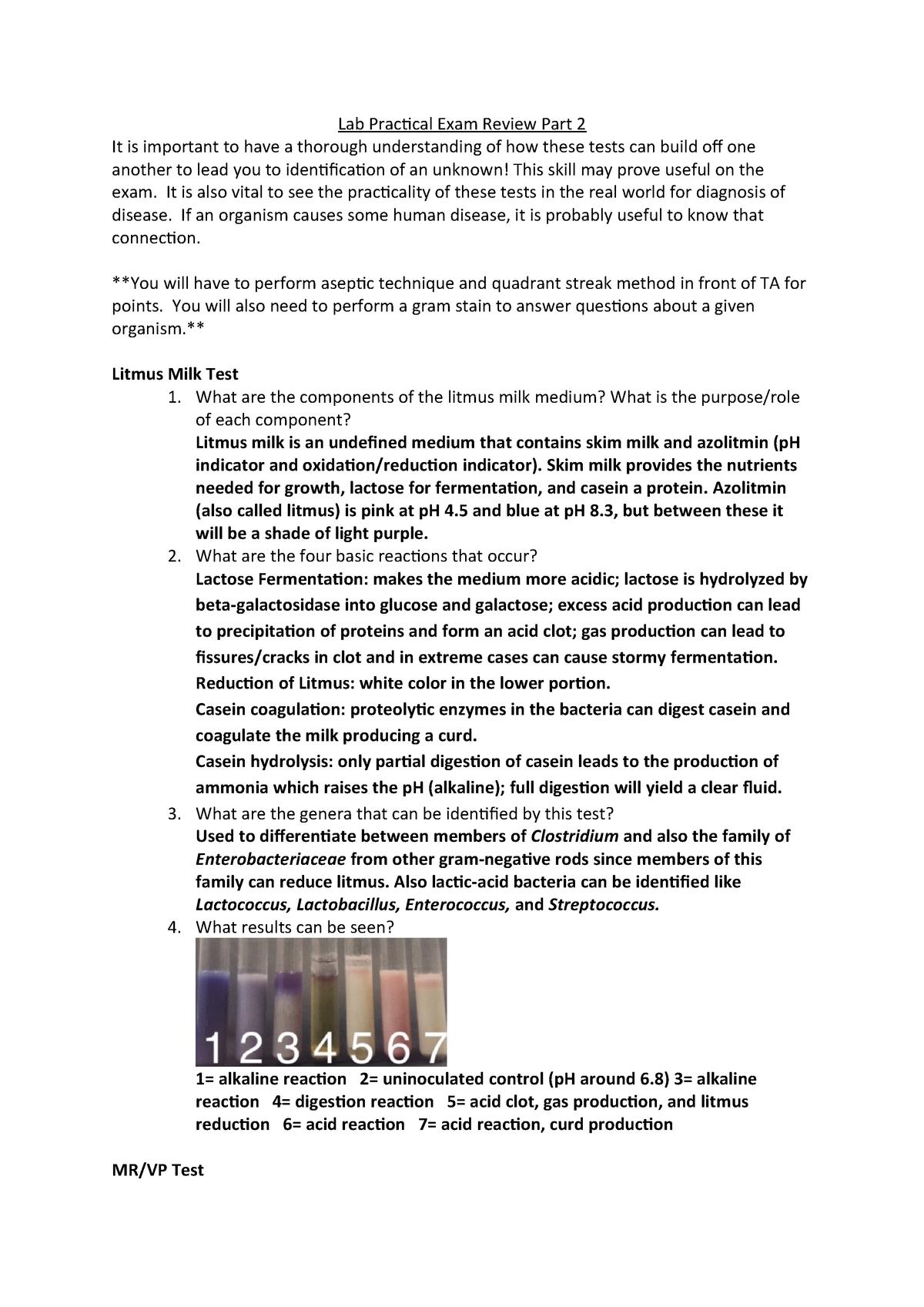 Biol251L Lab Practical Exam Review Part 2 - BIOL 251L - UNLV