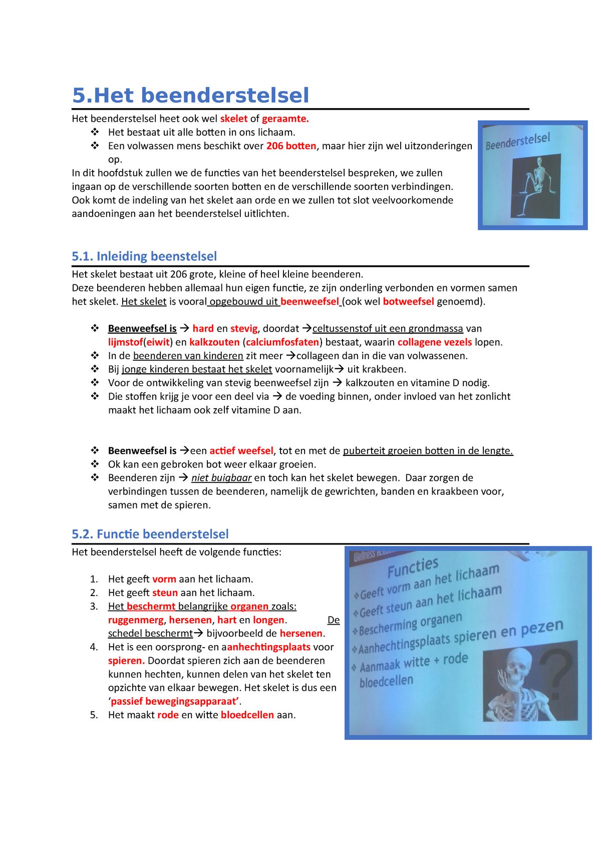 5het Beenderstelsel Anatomiefysiologie 1000anfy11