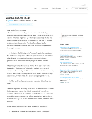 wnz media case study answers