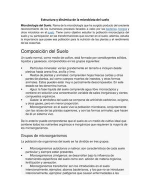 Estructura Y Dinámica De La Microbiota Del Suelo Tie0464
