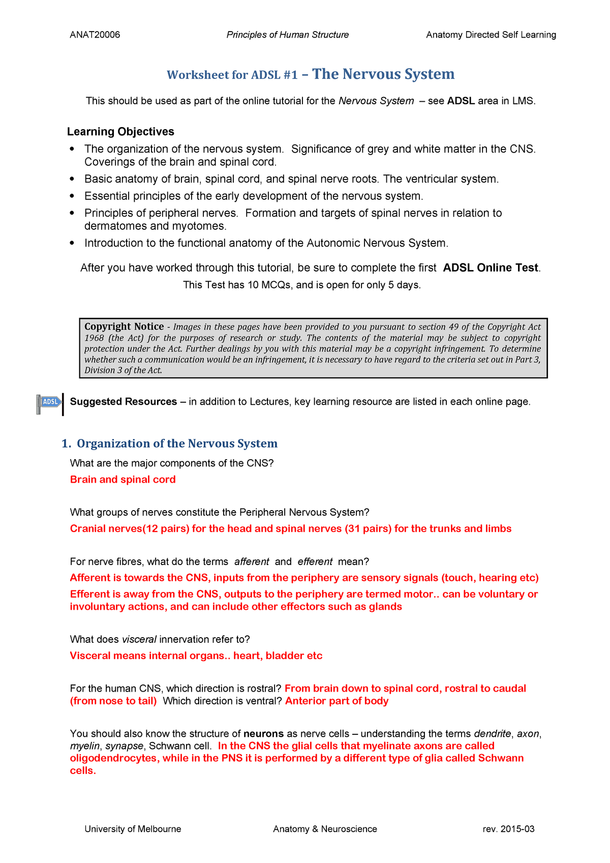 The Anatomy Of A Synapse Worksheet Answers - Anatomy ...