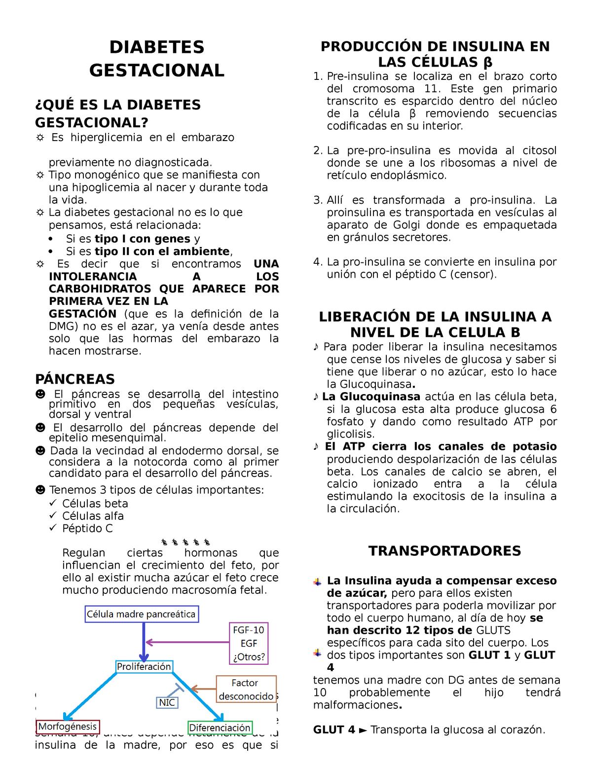 nivel de péptido c en diabetes