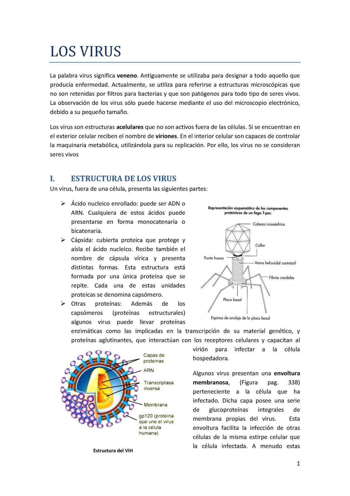 Aspectos Generales De Los Virus Microbiología Uv Studocu