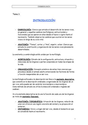 Embriologia - Apuntes, temas 1 - 14 - 001: Anatomía Veterinaria ...