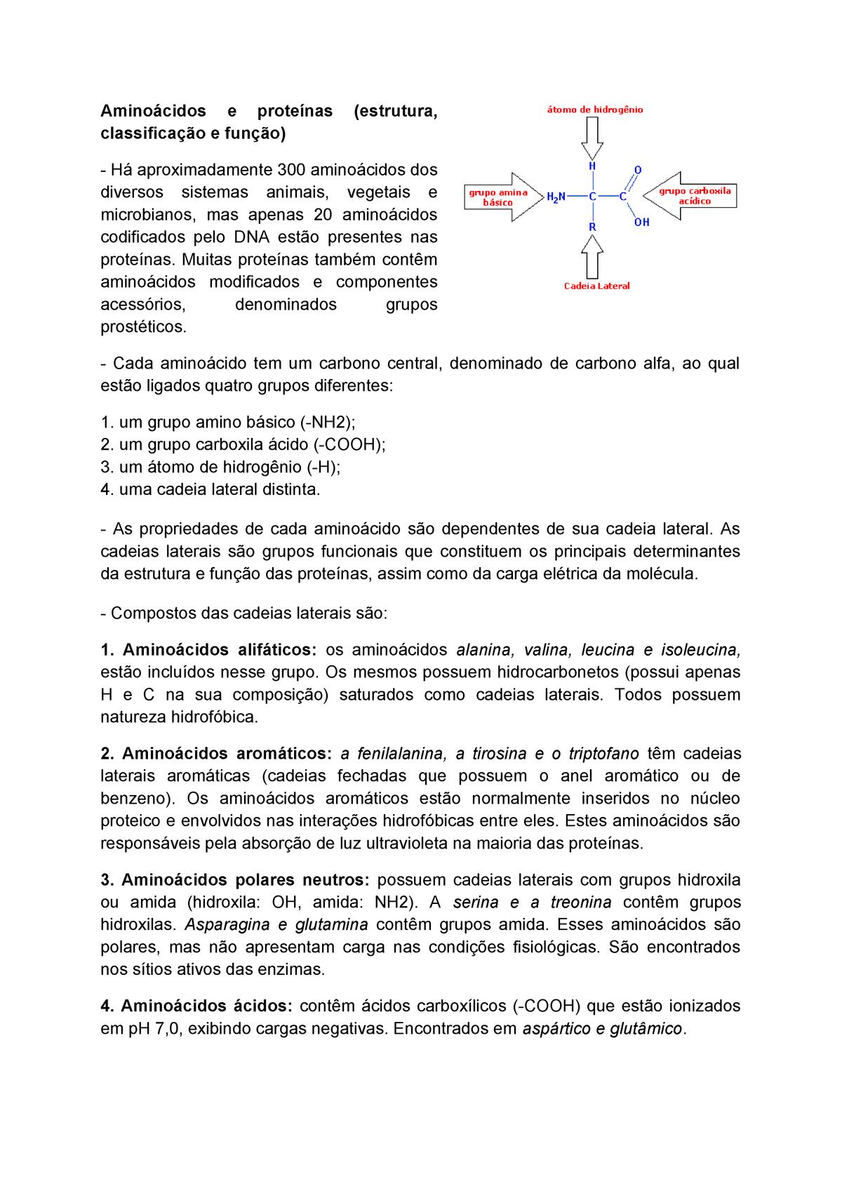 Nutrientes Aminoácidos E Proteínas Estrutura