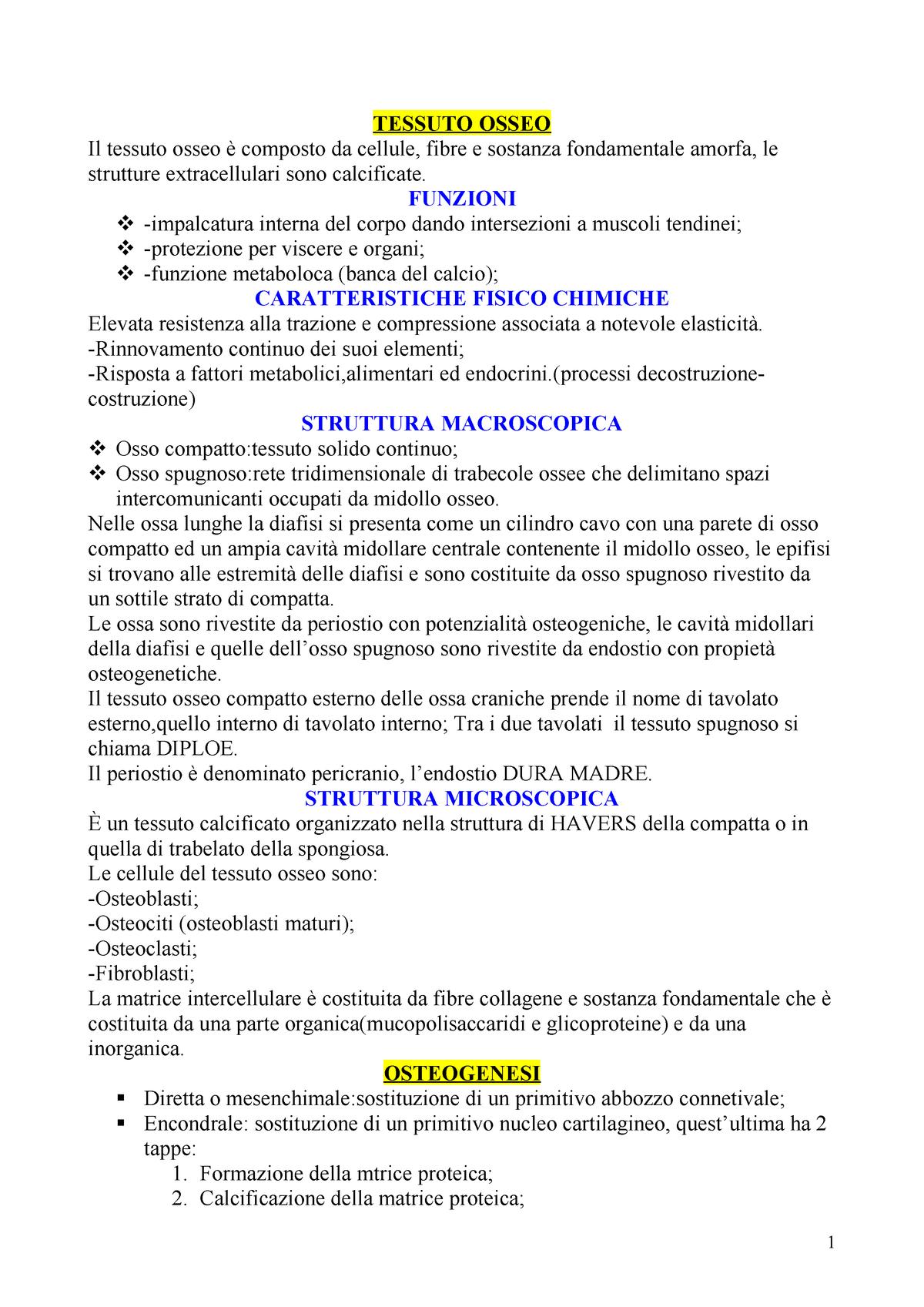 Reumatologia Uniba Studocu