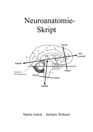 Neuroanatomie Skript - 20 120 14046: Vorlesung Neuroanatomie - StuDocu