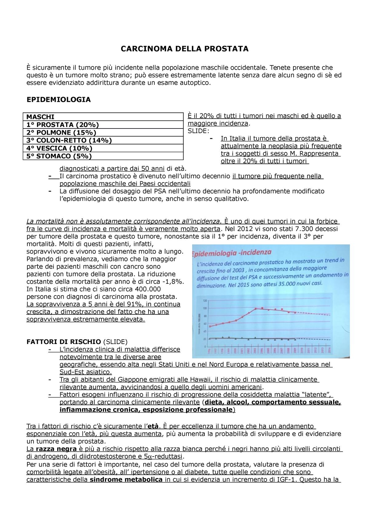 dichiarare la funzione della prostata e delle vescicole seminali