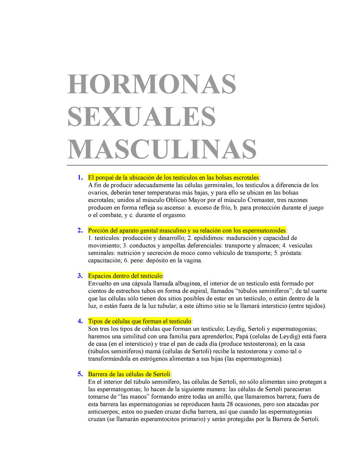 cuales son las hormonas masculinas y su funcion