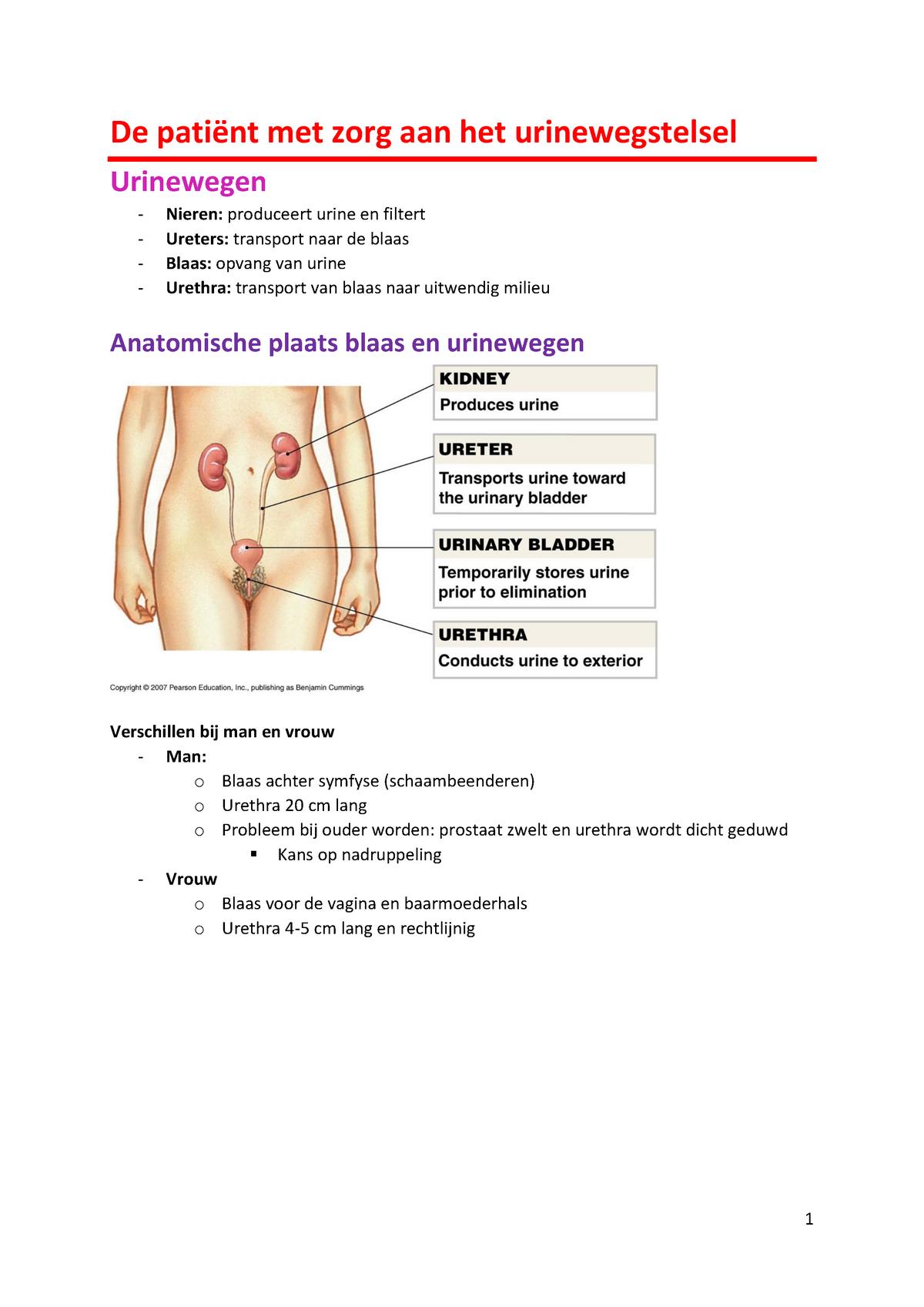 spuiten urethra