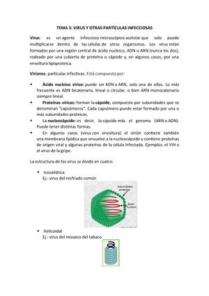 Tema 3 Biologia Upm Studocu
