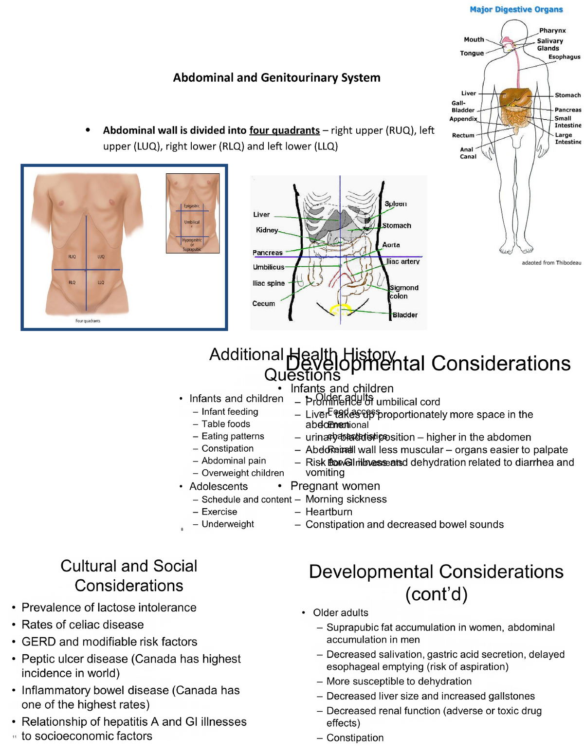 8 Abdominal and Genitourinary System - NSG2317T: Health