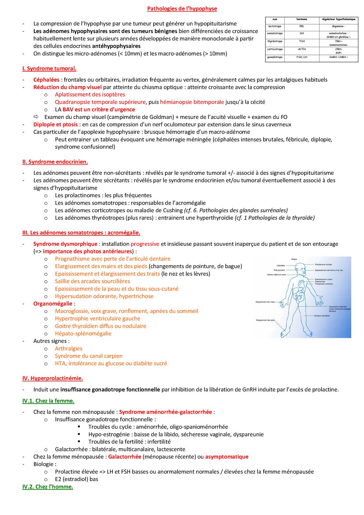 Pathologies de l'hypophyse - Pathologies infectieuses - StuDocu