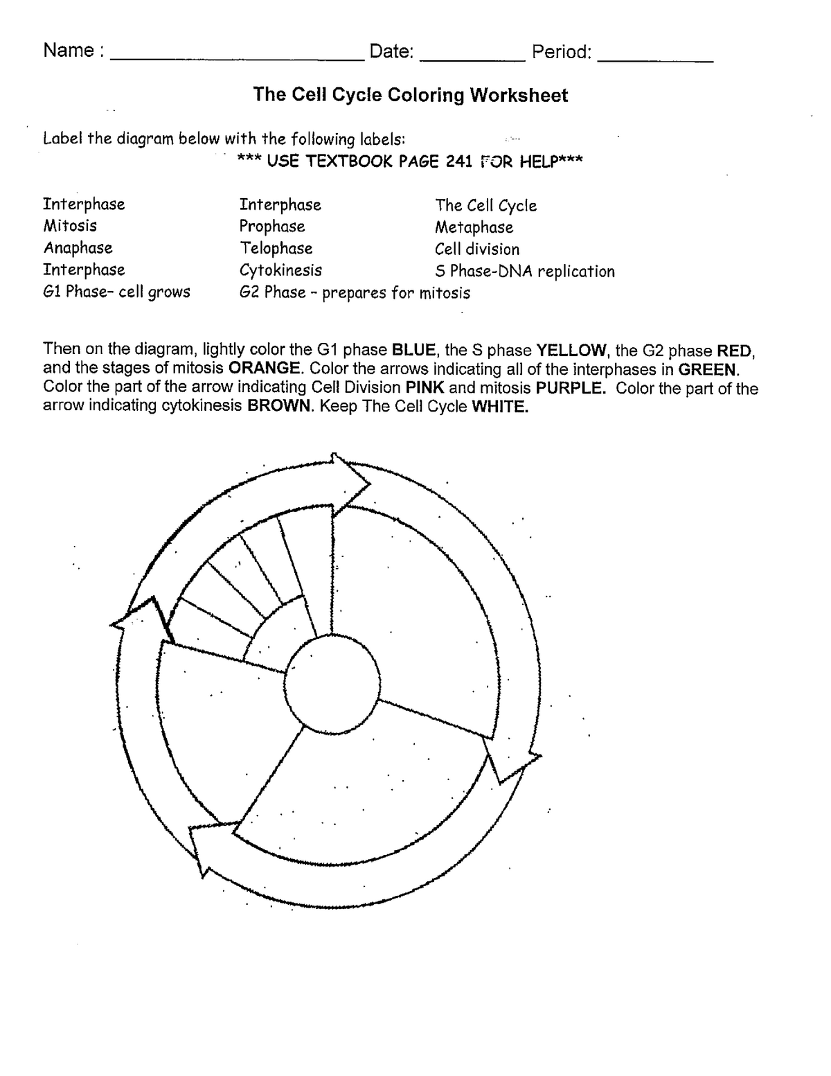 Cell Cycle Coloring Worksheet Geed 10083 Pup Studocu