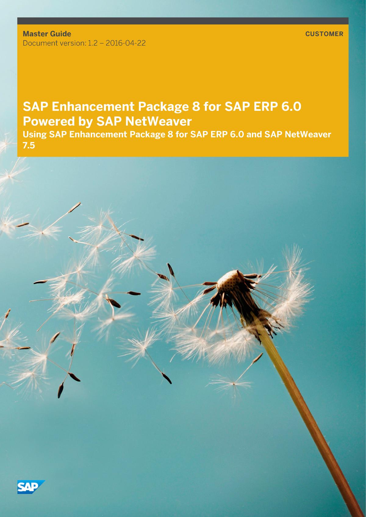 Master Guide for SAP Enhancement Package 8 for SAP ERP 60E