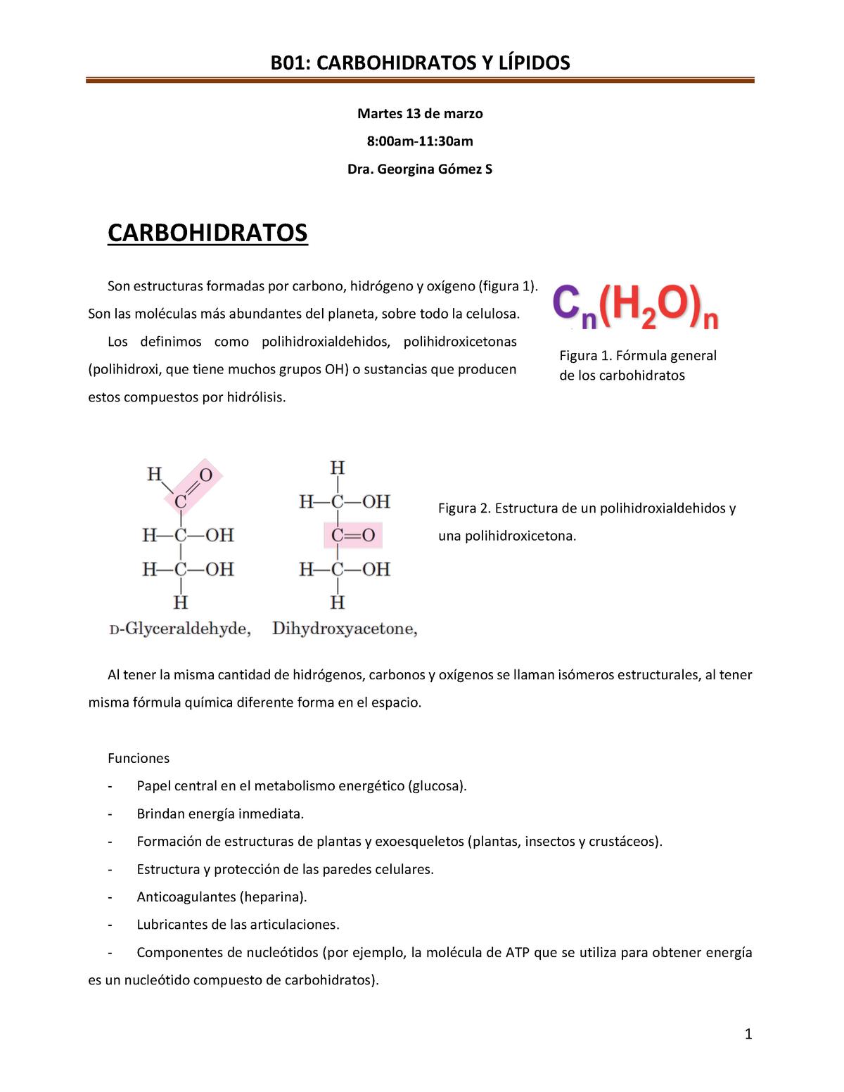 B01 Carbohidratos Y Lípidos Dra Georgina Gomez Me0117