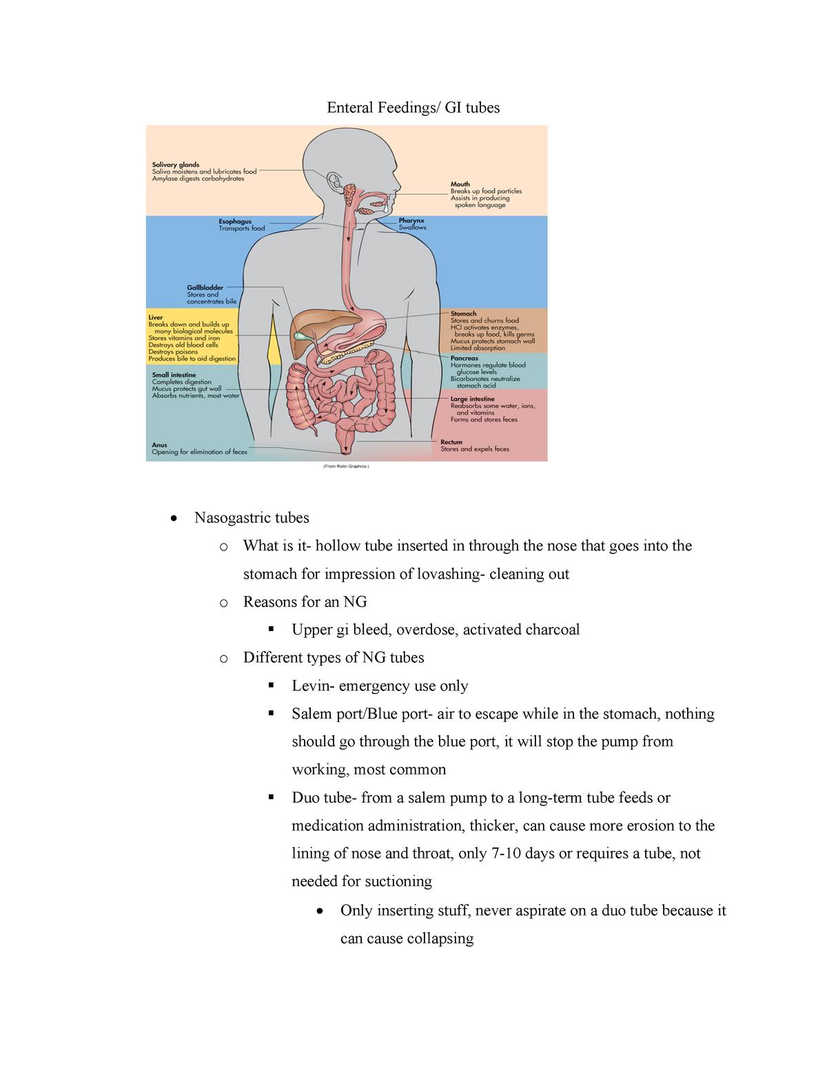 food tube diagram enteral feedings ng tubes health assessment du studocu  enteral feedings ng tubes health