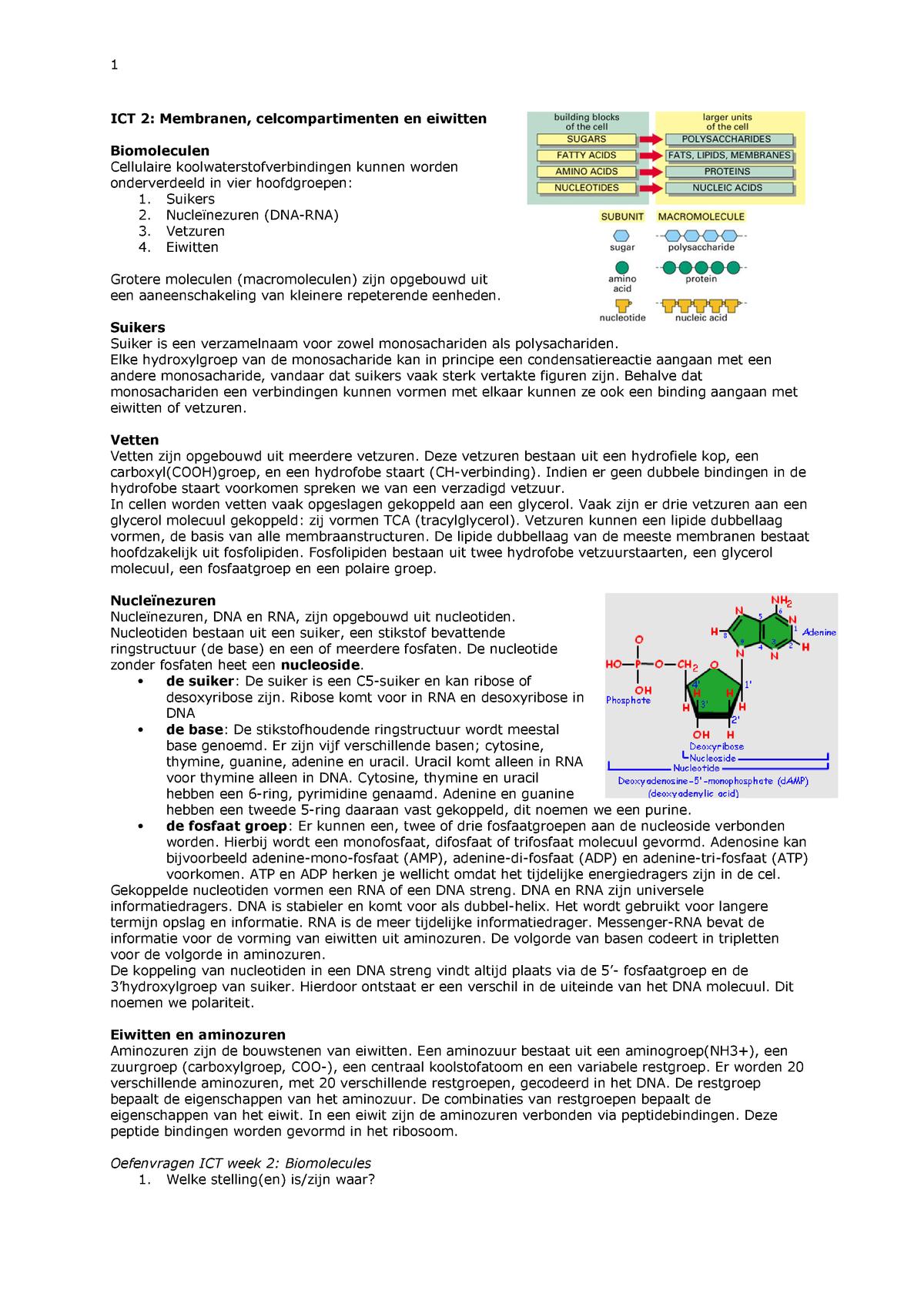 Ict Week 2 Cell Biology Cbi 10306 Studeersnel