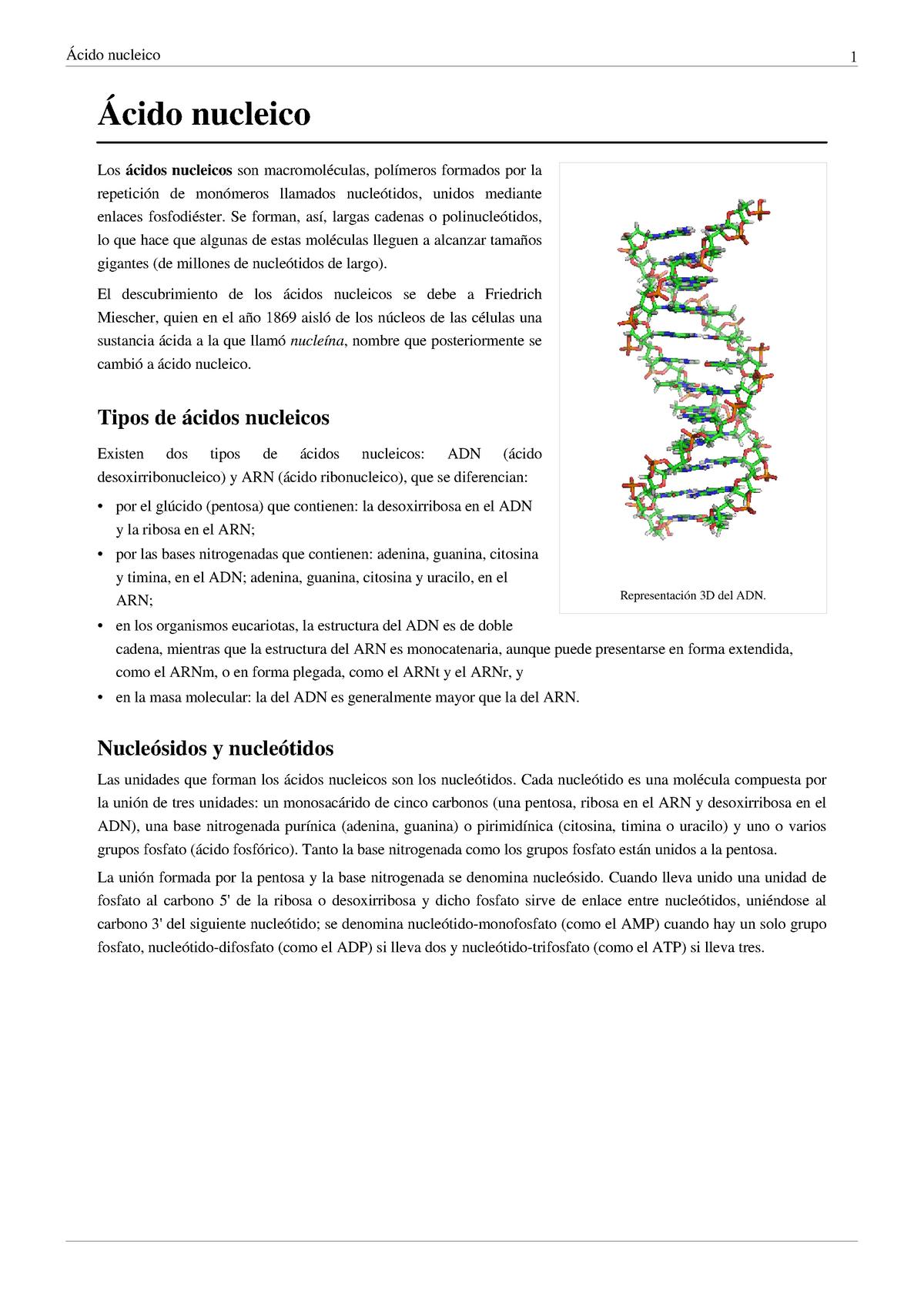 ácido Nucleíco Quimica Cdd Studocu