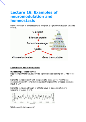 Lecture 16- Examples of neuromodulation and homeostasis - C8518
