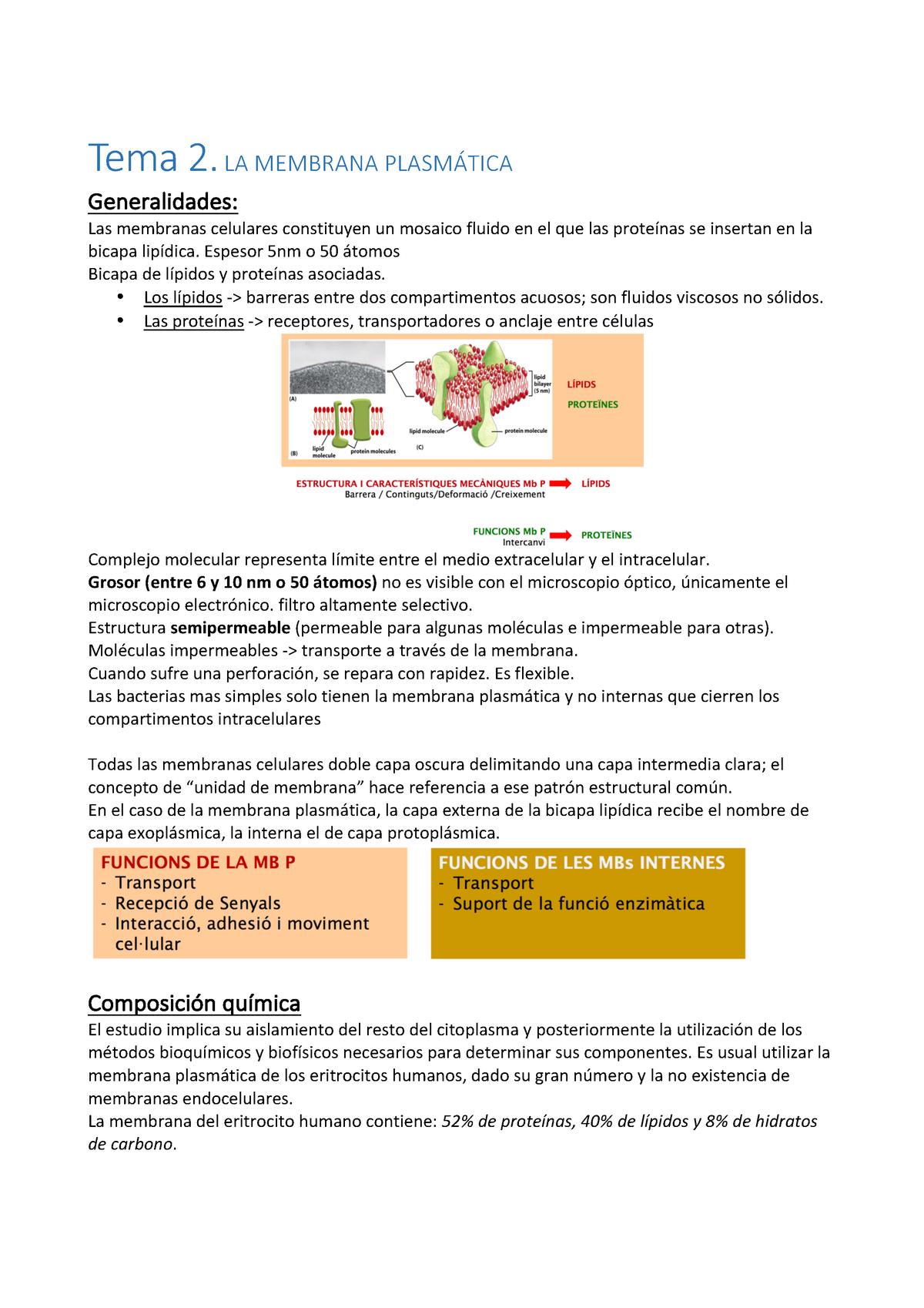 Tema 2 Estructura De Membrana Biología Celular Uab
