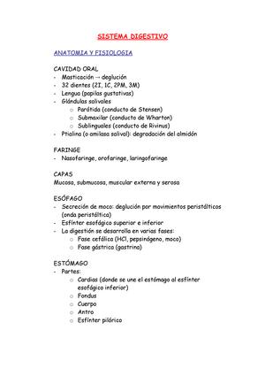 Apuntes Sistema Digestivo - 21650: Anatomía y Fisiología del Sistema ...