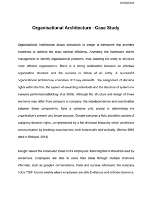 Organisational Architecture Ecos3003 Hierarchies Incentives