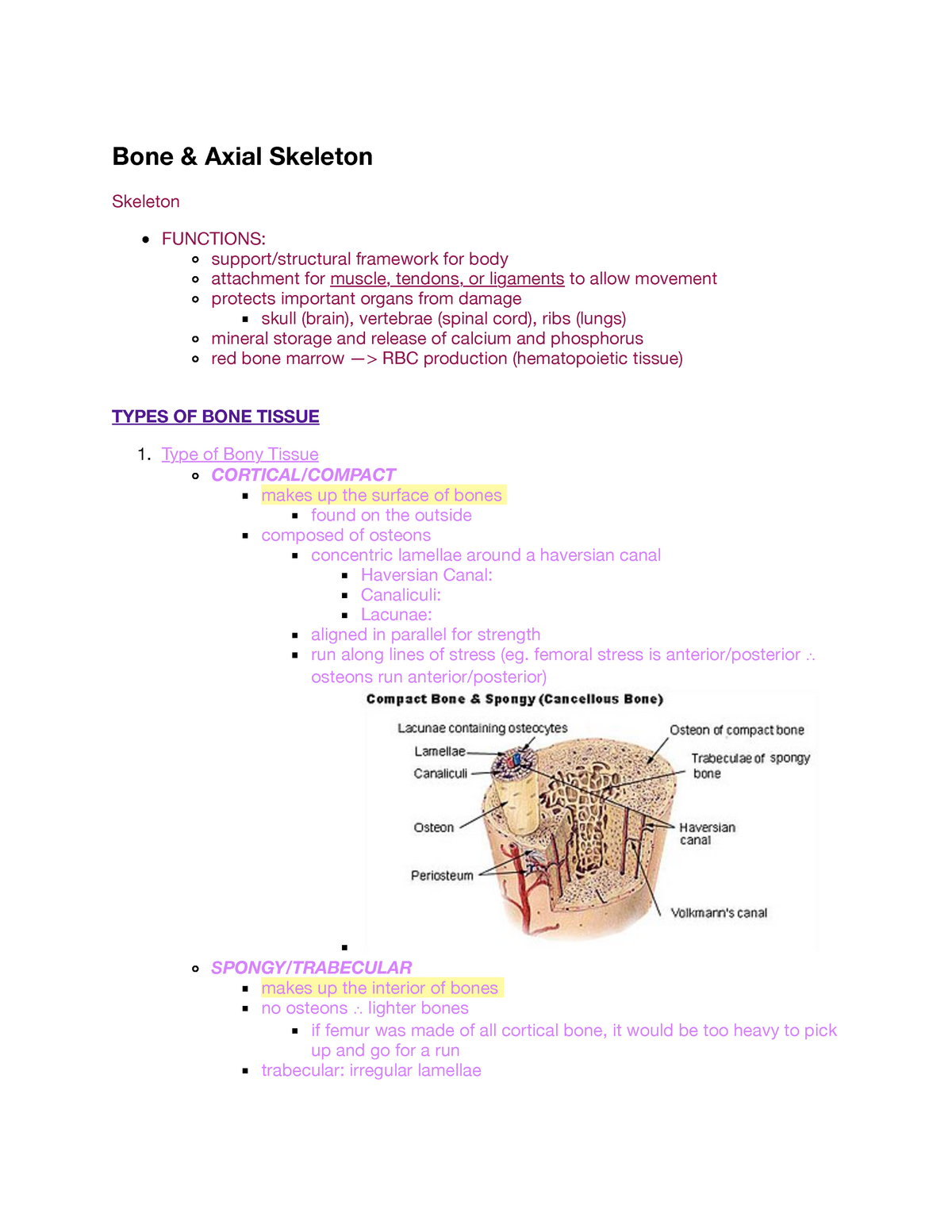 Bone & Axial Skeleton - Lecture notes 2 - 2222A: Systemic Approach