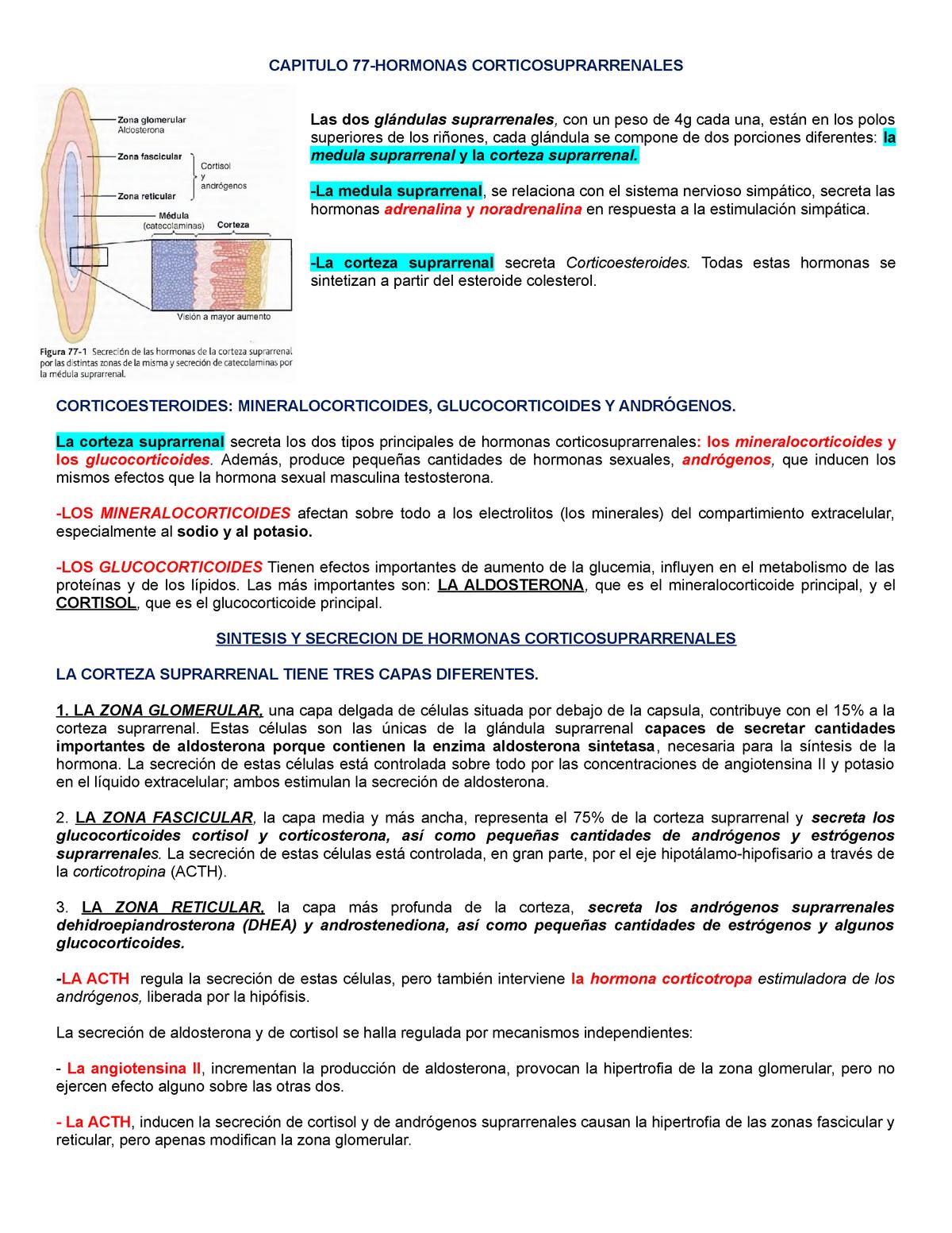 enfermedades de la corteza adrenal