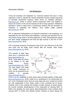 c01be1b9ce5b7 Cell Metabolism Essay, Sho Connell - SLS1013: Biochemistry And Cell ...