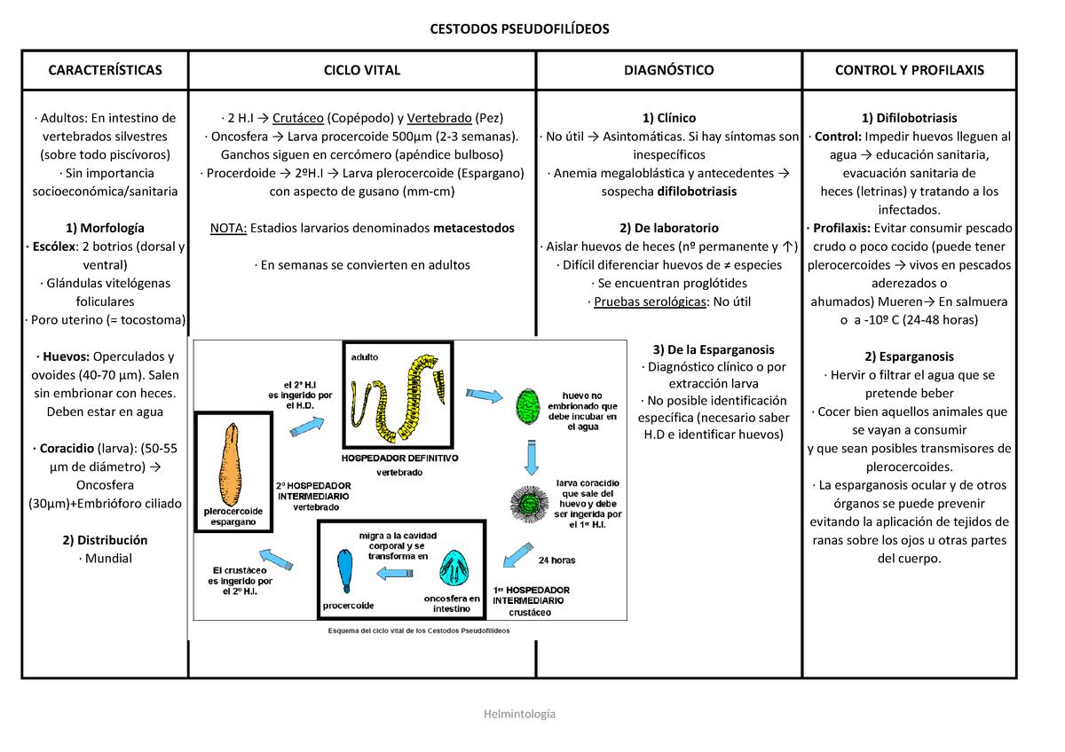 síntomas de trematodos parásitos
