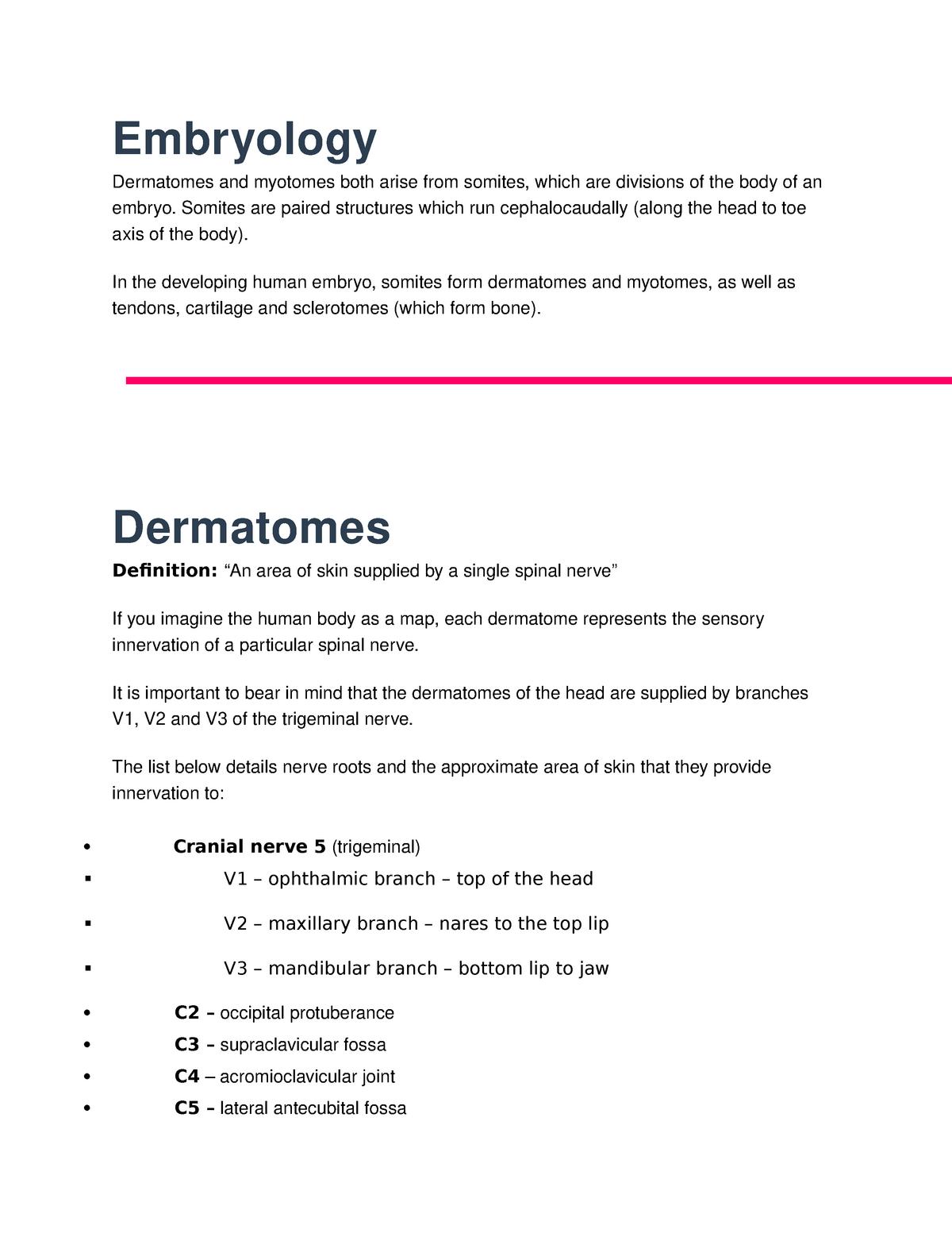 Dermatomes And Myotomes Summary Md1020 Studocu