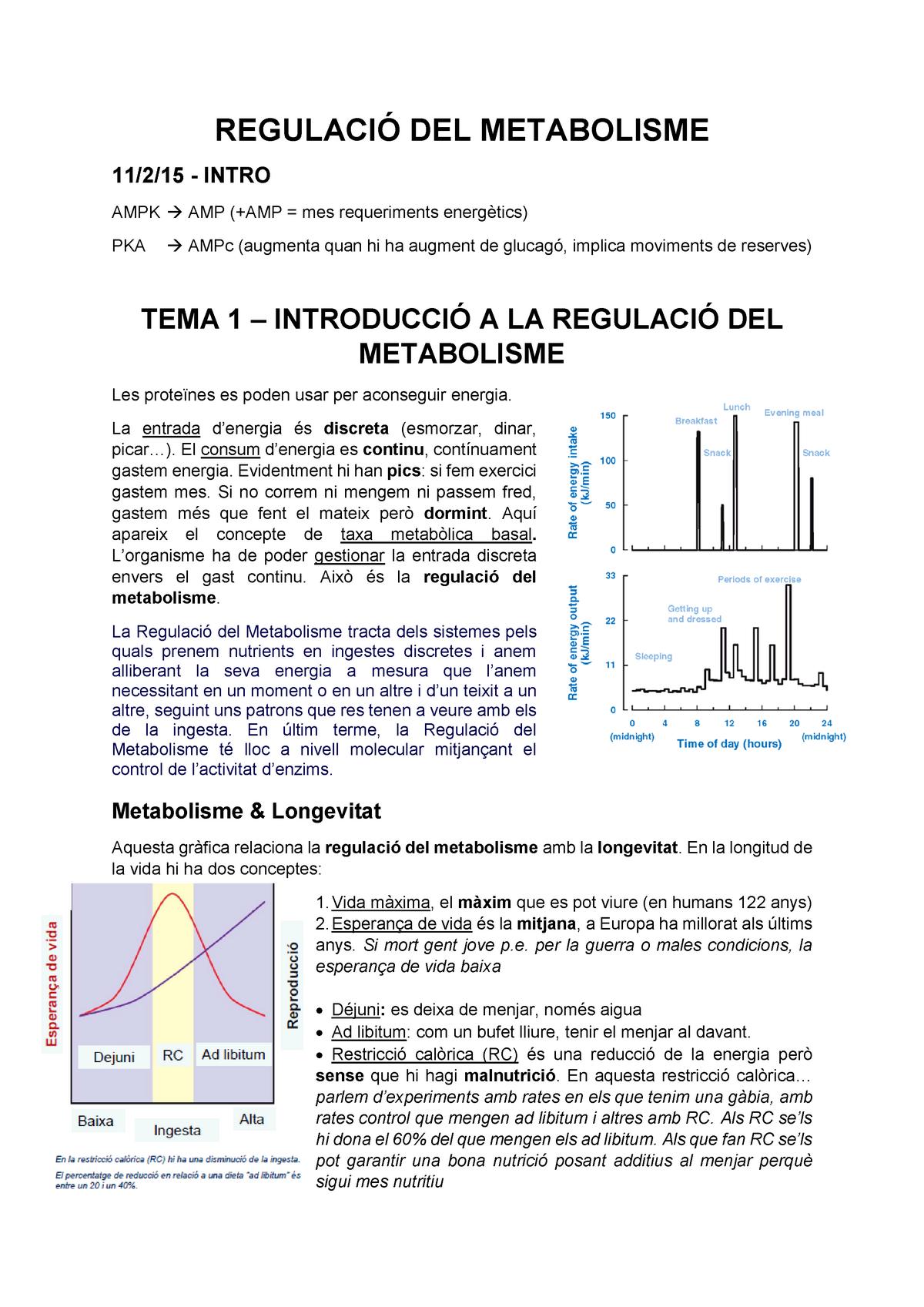 edbd72a7e87451 Tema 1 - Introducció - Regulació del Metabolisme - StuDocu