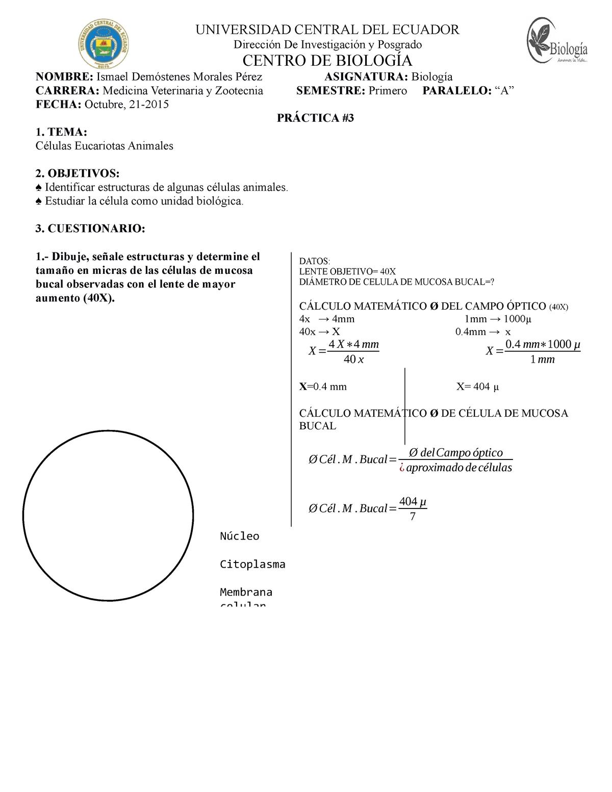 Informe Lab 3 Biología Fmvz Biologia Celular Qbb011 Uce